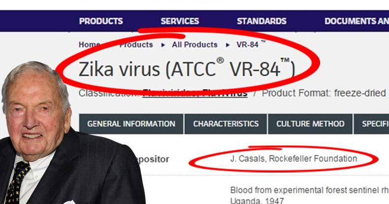zika virus rockerfeller