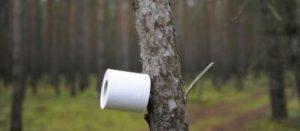 Le Japon appelle les citoyens à faire des réserves… de papier toilette