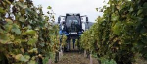 Parkinson liée aux pesticides : Les agriculteurs minimisent encore le danger